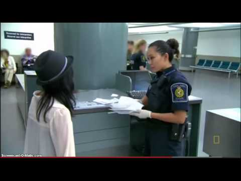 Gia Hạn Visa Study Permit Canada