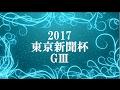 【競馬2017】東京新聞杯  馬券穴ライザー