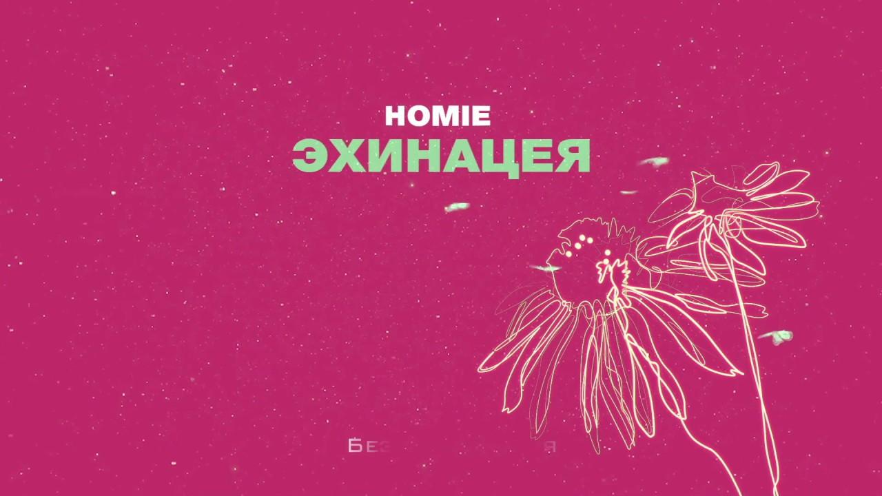 HOMIE - Эхинацея (премьера трека, 2019)