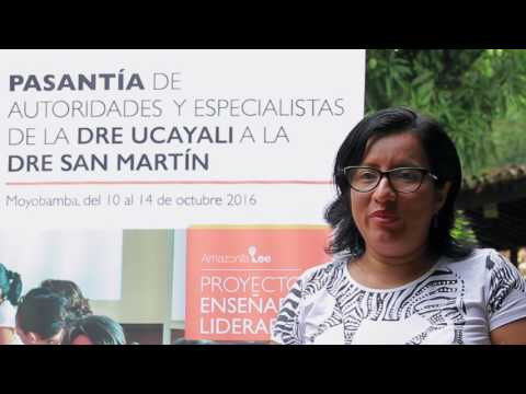 Pasantia San Martín 2016   Testimonio
