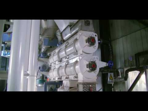 Strongwin 5 tons per hour animal feed production line/feed pellet plant