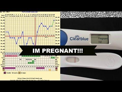 Poliklinika Harni - Upotreba metformina u trudnoći