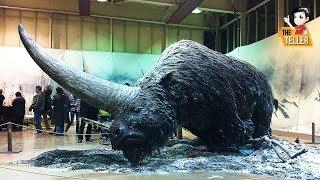 8 สัตว์สูญพันธุ์ ที่จะฟื้นคืนชีพอีกครั้งในเร็ววันนี้ ( ตำนาน สัตว์ดึกดำบรรพ์ ของจริง !!)
