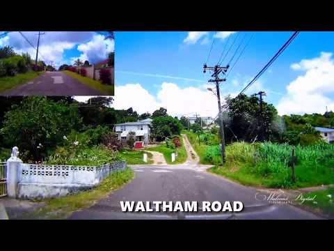 Waltham Road | Mandeville Jamaica | Walinton Mosquera