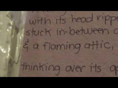 A Teddy Bear, Poem By Homeless [Swearing]