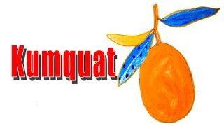 How to Draw a Kumquat