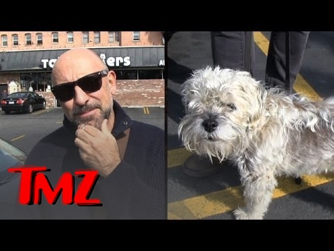 Carlo Rota: Would You Be Friends With Your Dog?  TMZ