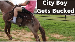 City Boys Trying to Be Cowboys (Bucked Off)
