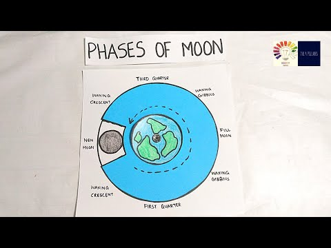 Phases of Moon Working Model | Phases of moon tlm | phases of moon model | School project ideas