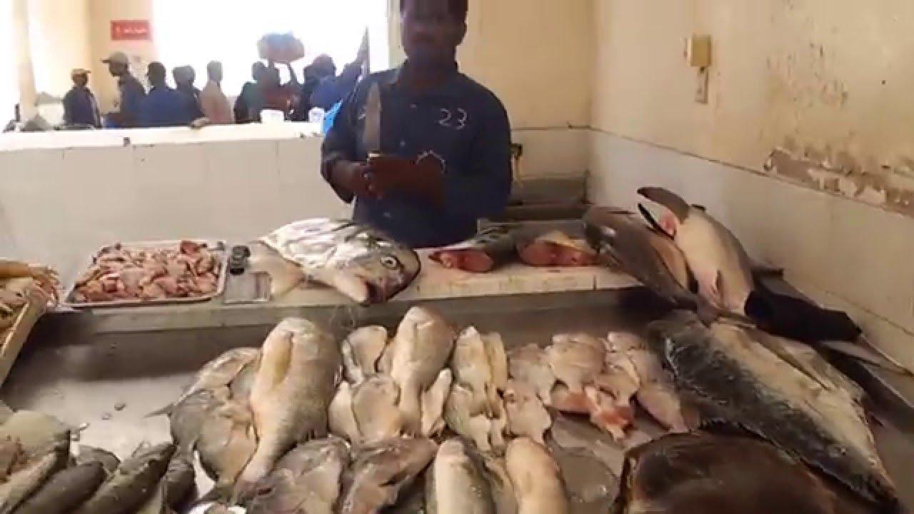 At Ajman Fish Market and Ajman Port, Ajman, UAE سوق السمك والميناء في عجمان