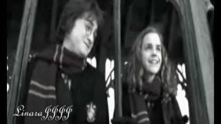 Гарри и Гермиона - Больше, чем жизнь