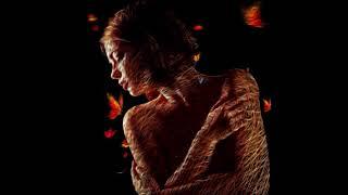 Schiller & Klaus Schulze - Desire