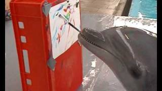 Amazing Dolphin painting project!! Must see!!