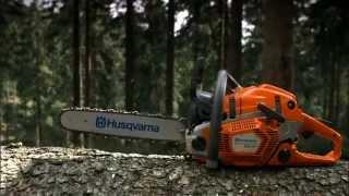 Entdecken Sie die Husqvarna 560 XP®