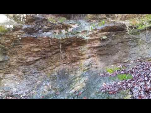 200 Acres For Sale in Talladega National Forest