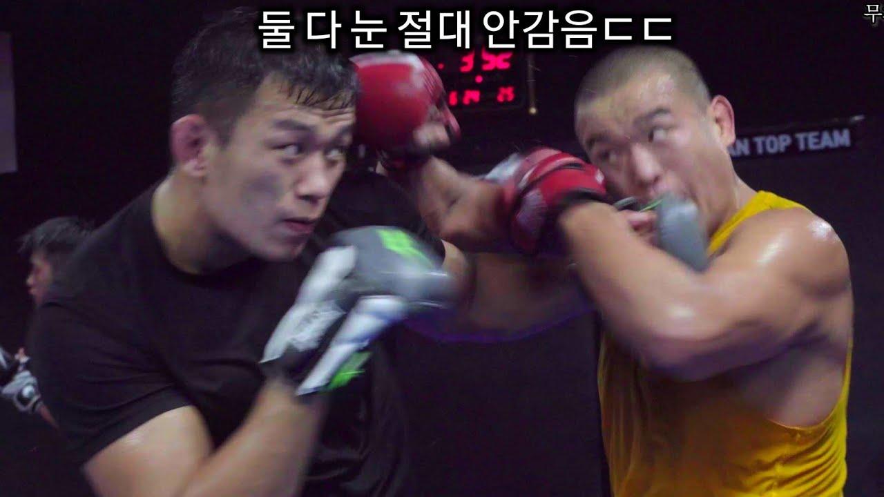 정다운 vs 박준용 ufc 시합준비 리얼 스파링 (초고화질)