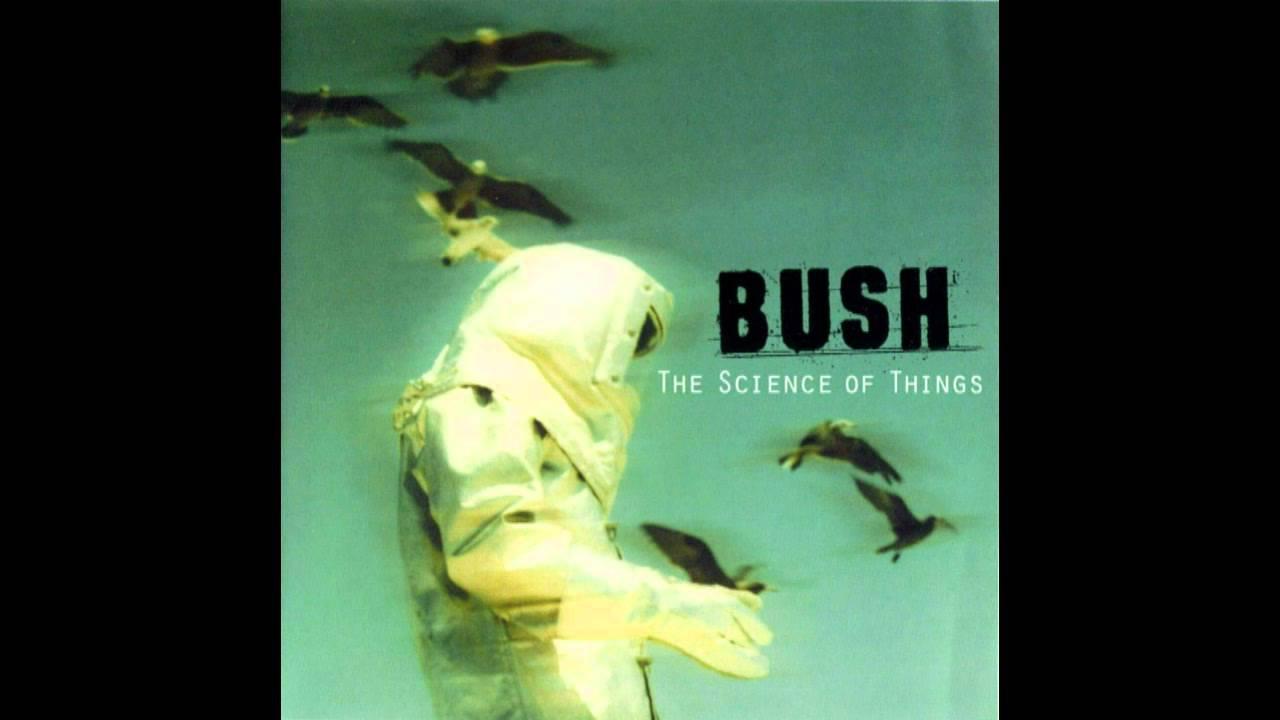 bush-prizefighter-0910bush
