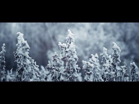 [BlackRoseProd] - Winter : Astrakhan, Topolinaya Roshcha [2015]