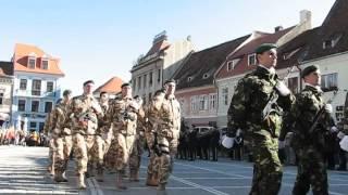 defilare ziua armatei brasov 2015