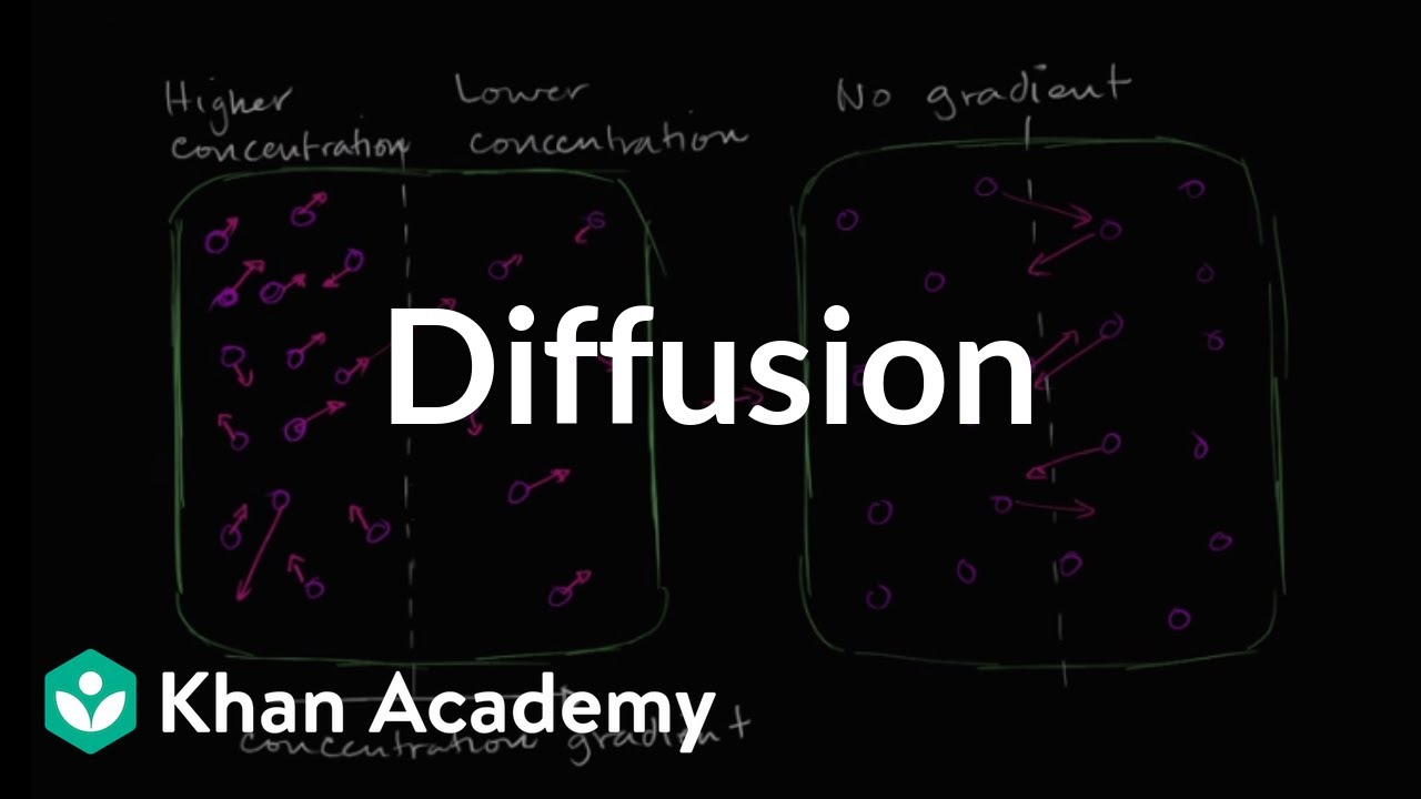 Diffusion - Introduction (video) | Khan Academy
