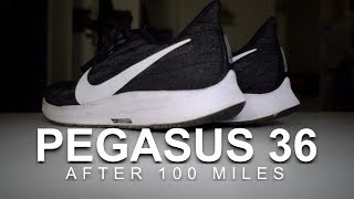 Pegasus 36 After 100 Miles