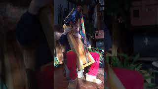 Ellen's Harp