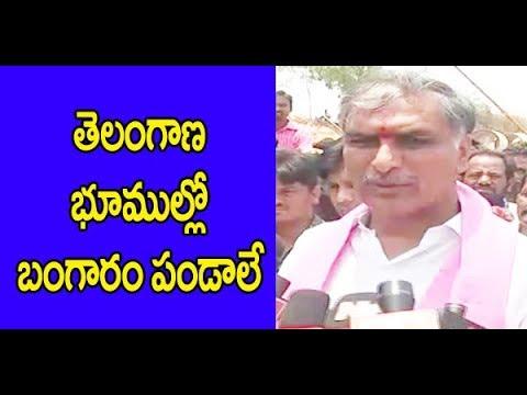 Harish on Kaleshwaram | Telangana Governament | CM KCR| Great Telangana TV
