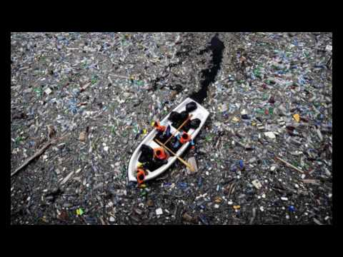 A WORLD WITHOUT PLASTIC (homework)