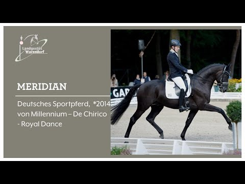 www.sporthorses-online.com 2010 Hanoverian mare by Belissimo sold from YouTube · Duration:  57 seconds