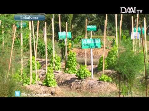 IDEP, Permaculture Bali
