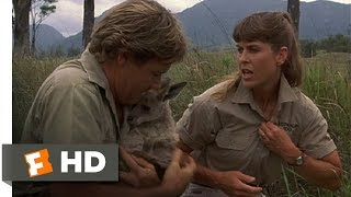 The Crocodile Hunter: Collision Course (4/10) Movie CLIP - Saving the Joey (2002) HD