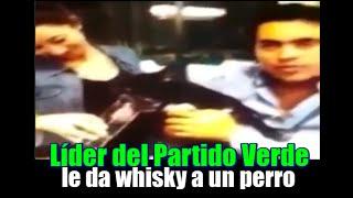Líder del Partido Verde en Hidalgo le da whisky a un perro