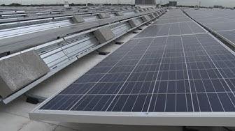 Solar energy primed to power NJ's business sector
