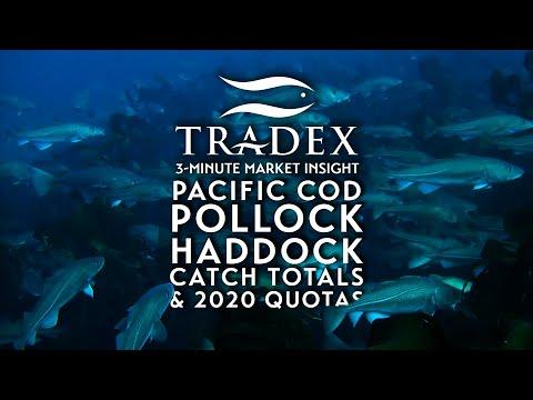 3MMI - Pacific Cod, Pollock, Haddock Global Market Update