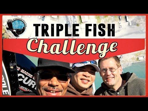 Triple Fish Challenge 2018