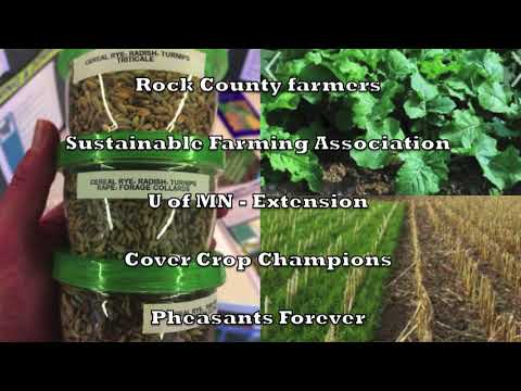 Rock County - Cover Crop Field Day 2017 promo