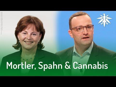 Mortler, Spahn & Cannabis | DHV-News #157