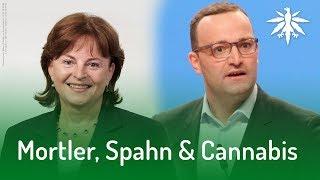 Mortler, Spahn & Cannabis   DHV-News #157
