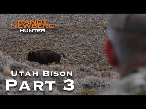 2018 Utah Archery Bison with Randy Newberg (Part 3)