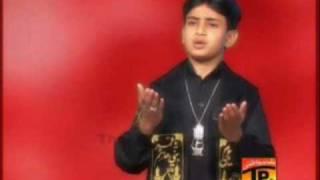 Zeeshan haider- Alvida Alvida