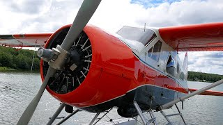 Pilot's Dream! DHC-2 Beaver: Left Seat Checkout - Why I went to Alaska!