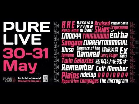 PURE LIVE FESTIVAL - DAY 2