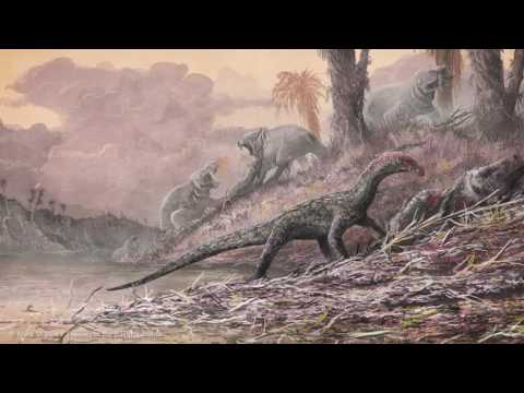 New Pre-dinosaur fossil reptile discovered