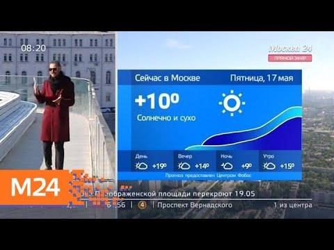 """""""Утро"""": погода без осадков ожидается в Москве 17 мая - Москва 24"""