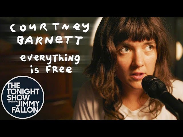 everything is free father john misty