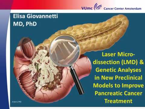 LMD & Genetic Analyses in new Preclinical Models -  Elisa Giovannetti