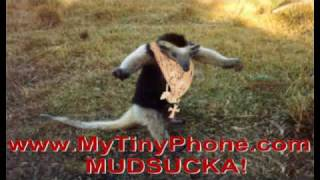 A-Team - Mr.T - Pick Up Your Phone Mudsucka - Free Funny Ringtone