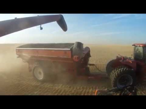 Huge farm in Alberta canada over 65 000 acres B&D WALTER FARMS Walter's harvesting