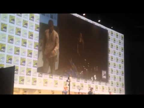 DC Legends Of Tomorrow Cast Panel Introduced At Comic-Con #SDCC - Zennie62
