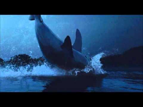 Amazon.com: Watch Shark Night   Prime Video